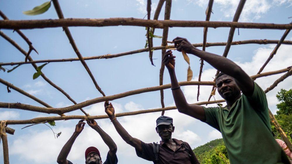 Haiti, terremoto. Camilianos: com caridade evangélica, responder às necessidades